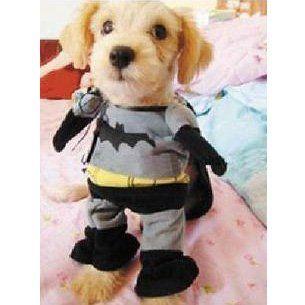 Amazon.com : Alfie Pet by Petoga Couture - Superhero Costume Batman - Size: M : Pet Supplies