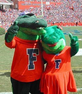 Albert E. Gator and Alberta Gator are the official mascots of the University of Florida Costumed in plush, Albert and Alberta are anthropomorphic representations of American alligators. http://www.payscale.com/research/US/School=University_of_Florida_(UF)/Salary