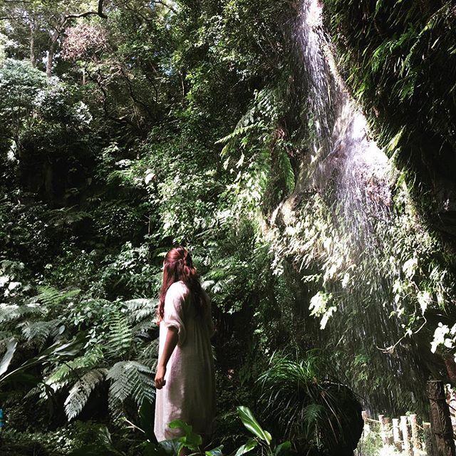 【moe_lala】さんのInstagramをピンしています。 《唄う  #裏見ヶ滝#八丈島 #japan #hachijo #森#グリーン#癒し#たくましい#空気感#唄う#深呼吸#感謝 #見上げる#滝#好きな場所》