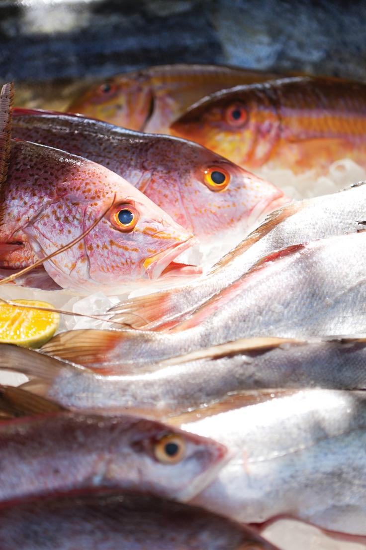 85 best taste of costa rica images on pinterest resorts for Costa rica fishing season