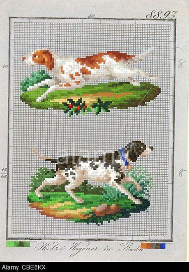 Berlin wool work pattern of dog from Hertz & Wegener