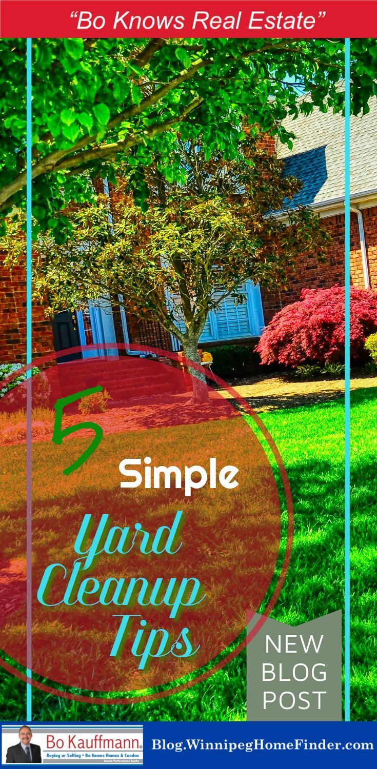 5 Timely Yard Cleanup And Landscaping Tips Landscaping 101