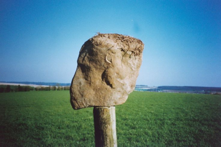 Sarsen head in left profile. SF 78. Found together with a sarsen triangle.