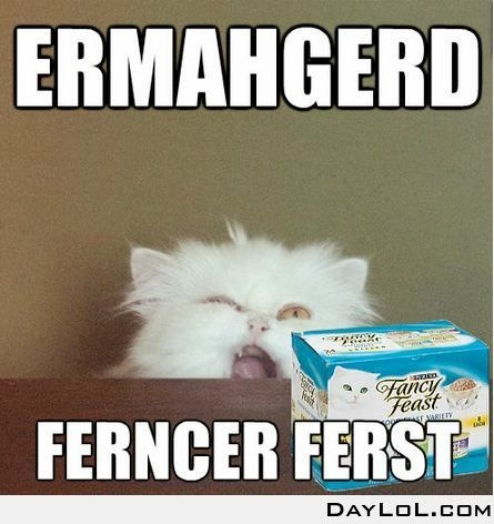 ERMAHGERD! I snorted I laughed so hard at this.