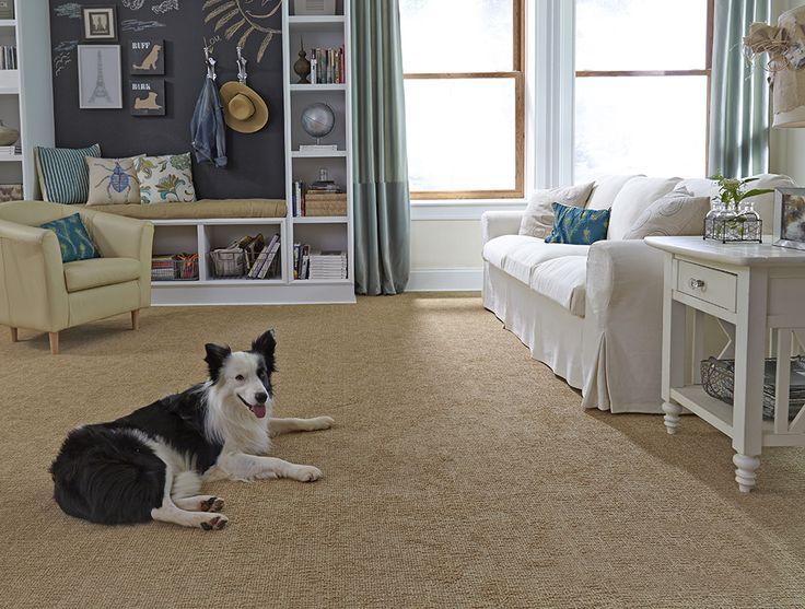290 Best Images About Carpet On Pinterest More Best Carpet Styles Carpet D