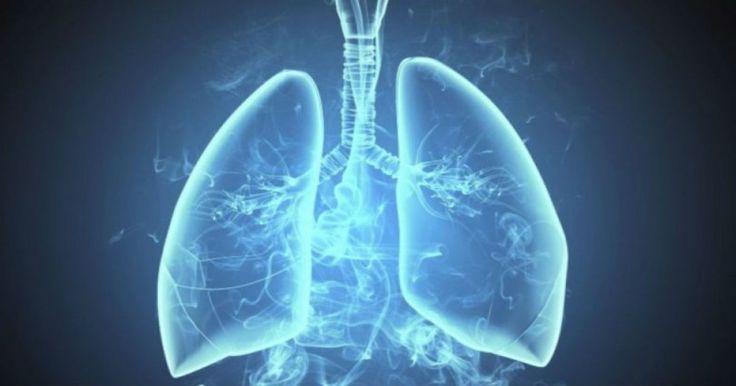Κάπνισμα: Πότε καθαρίζουν οι πνεύμονες από την στιγμή που κόβετε το τσιγάρο Crazynews.gr