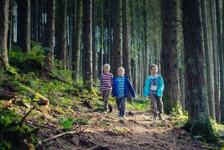 Child friendly holidays at Bluestone National Park Resort