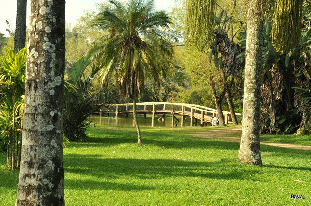 Jardim Botânico de Porto Alegre: um refúgio verde no meio da cidade