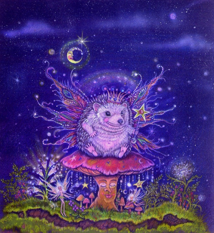 Copyrighted by Donna M. Antonucci Winston the Fairy hedgehog King $18.00: Fairy Hedgehog, Fairies, Donna Antonucci, Hedgehog King, Art, Hedgehog Heaven, Hedgie, Hedgehogs