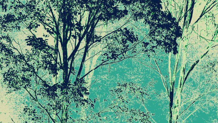 Aqua Blue Eucalypts by Blackbird Art and Design www.etsy.com/au/shop/BlackbirdArtDesign