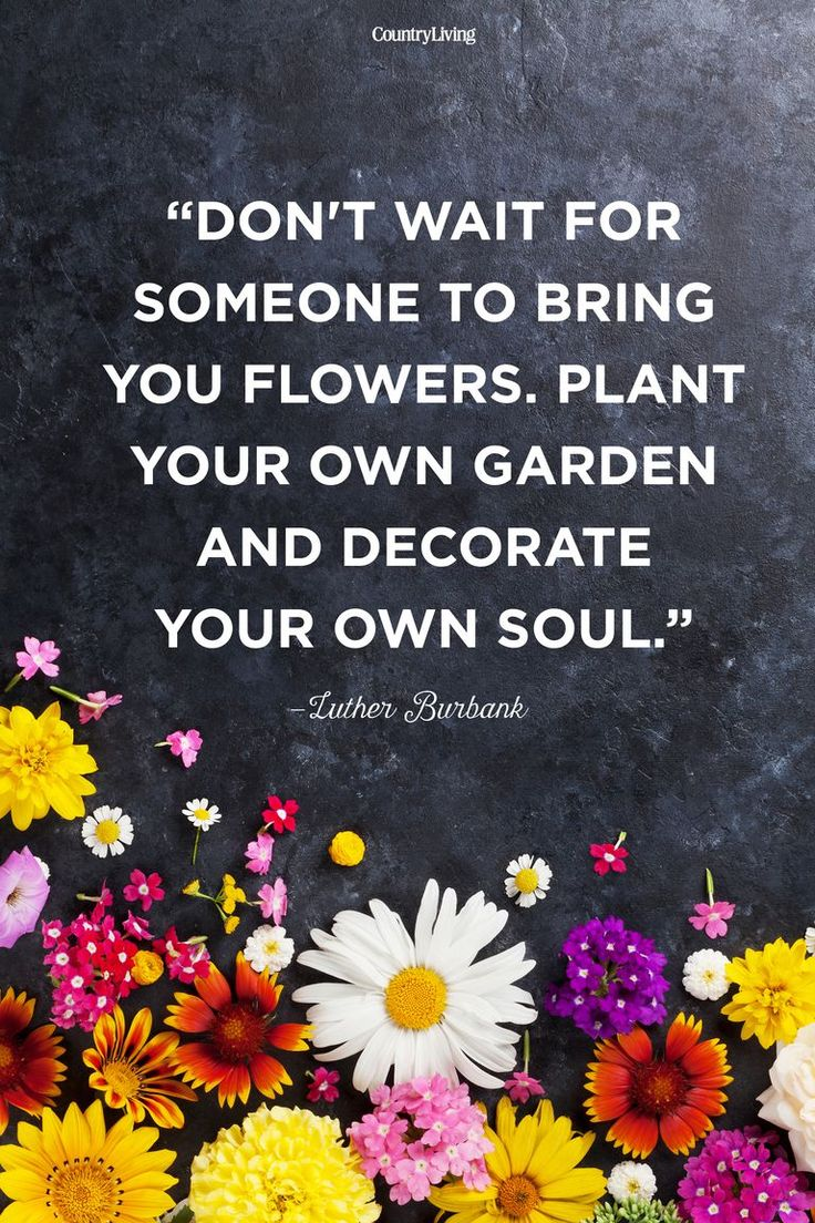 20 Beautiful Spring Quotes That Will Make You Smile Luther Burbank Spring Quote