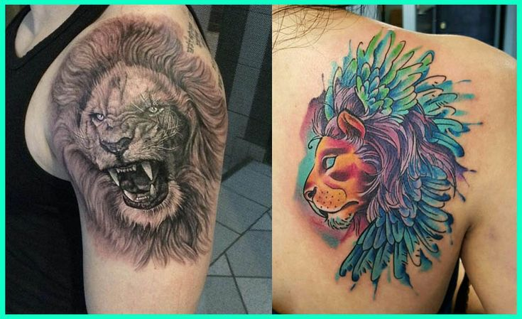 Lion Tattoos Images, Lion Tattoos Pictures, Lion Tattoos Photos, Lion Tattoos Videos, Lion Tattoos Amazing, Best Lion TattoosLion Tattoos Gallery, Lion Tattoos For Men, Lion Tattoos Desing, Lion Tattoos Idea, Lion Tattoos in the world, Lion Tattoos for Females, Lion Tattoos Tumblr and Pinterest