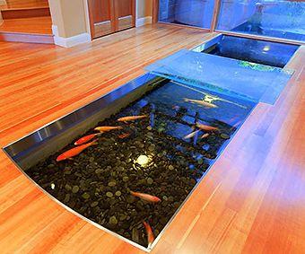 11 best beautiful aquariums custom la aquariums images for Indoor koi fish tank