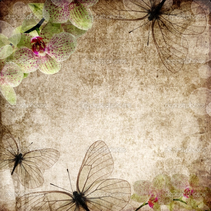 Orchid And Butterfly Vintage Wallpaper ♥