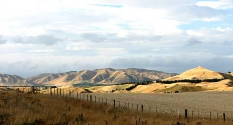 Iconic Marlborough hill scenery, New Zealand.