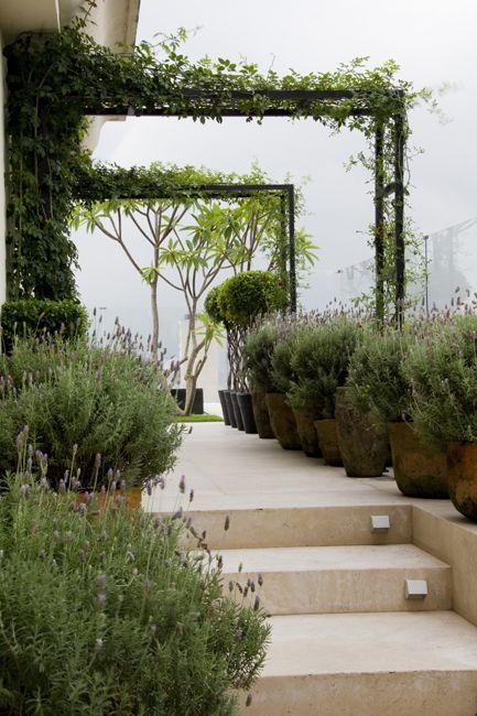 simple pergolas over light stone terrace