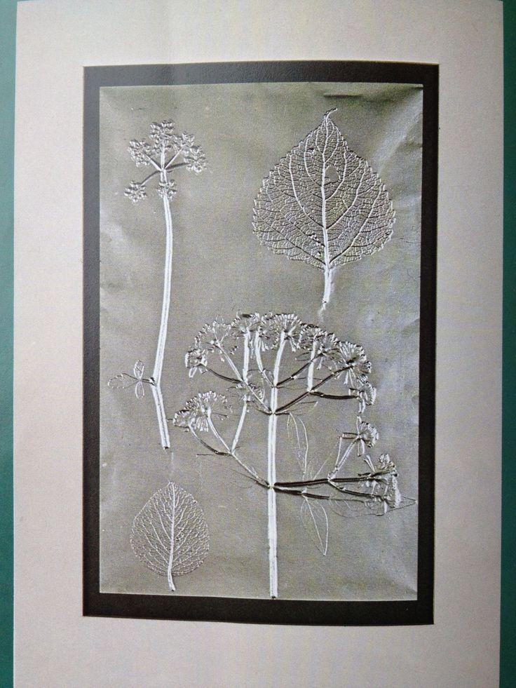 Bladeren en zilverpapier