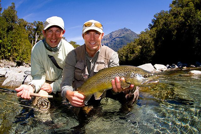 17 best images about fly fish new zealand on pinterest for New zealand trout fishing