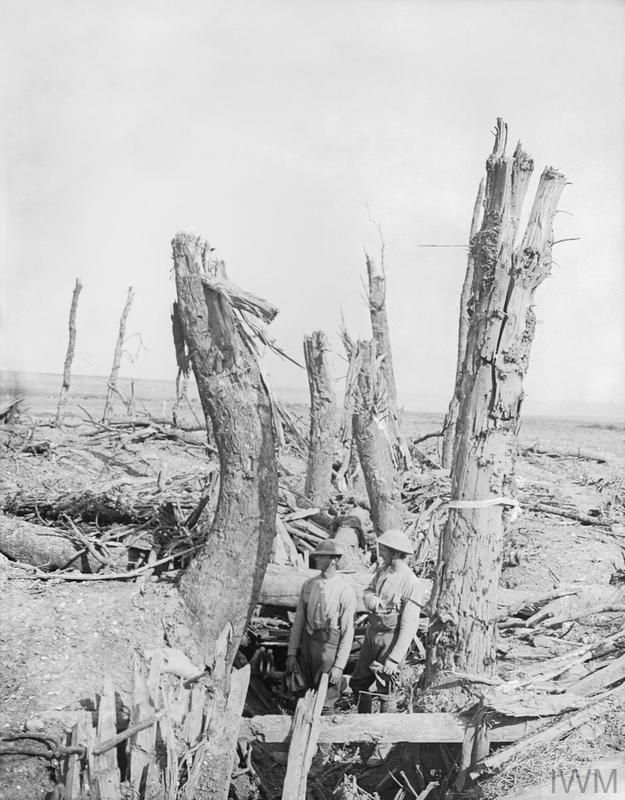 Two British soldiers standing in a wrecked German trench at Ginchy, during the Battle of the Somme. The trench appears to run between two rows of trees, which have been devastated by shellfire. Both soldiers are wearing steel helmets....