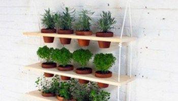 20 Amazing Vertical Gardens