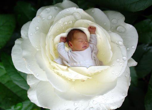 geboortewensen dochter -
