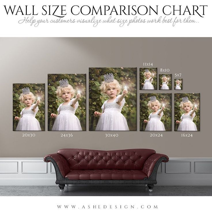 Wall Display Guides | Size Comparison Chart - Portrait