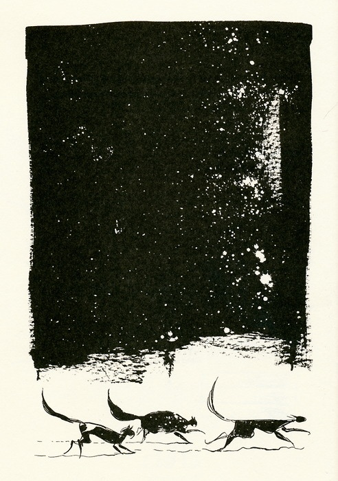 Dave McKean    Illustration from The Outlaw Varjak Paw by SF Said