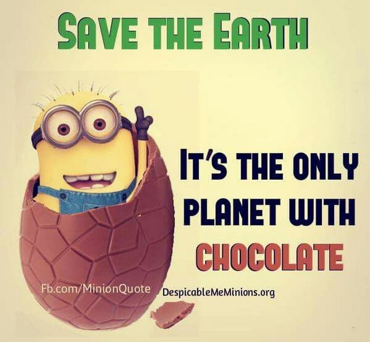 17 Best Funny Chocolate Quotes On Pinterest