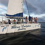 Our beautiful CATAMARANS party boats are ready to take you throw the beautiful Pacific Ocean of Costa Rica . On board you will be able to enjoy our Domestic Open Bar which includes Rum, Vodka, Tequila, Beer, cocktails, juices and refreshments.