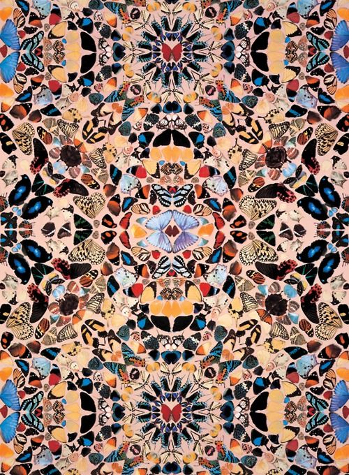 Damien Hirst's butterfly wallpaper...If I had a little girl I would put this on her ceiling!
