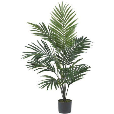 5u0027 kentia palm silk tree walmartcom best indoor palm