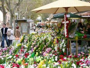 Floristería en Palma de Mallorca / La Rambla. Envío de flores a domicilio