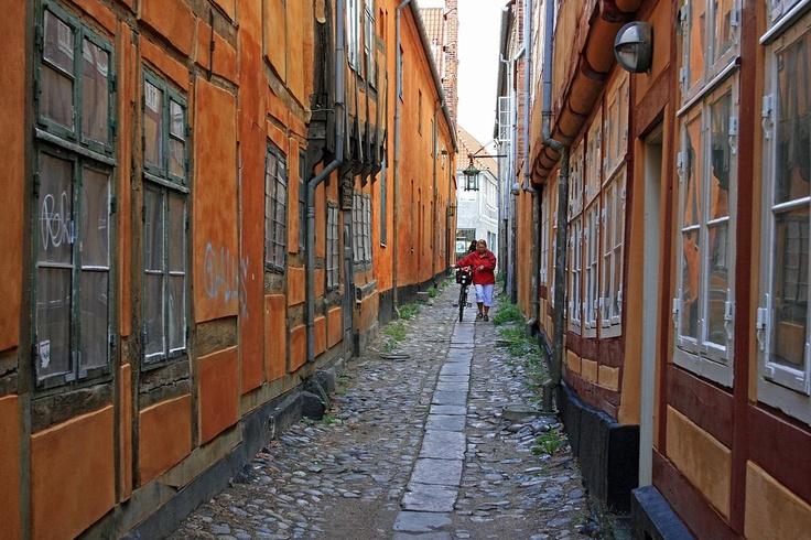 Cougar Kvinder Denmark Helsingør