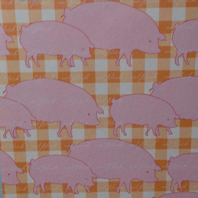 #postcard#postkarte#pig#schwein#schweingehabt#schweine#pigs#rosa#orange#illustration#zeichnung#art#artwork#kunst#pictures#bild#glücksbringer#luckycharms#animals#tiere#paperart#paperlove#paper#papier#drawing#painting#malen#gallery#nature#natur
