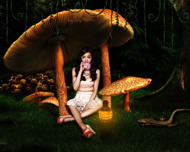 :iconxlaidz: SNSD Tiffany ~I'm Alone in The Mushrooms Land~  ♫instagram.com/joyshimizu ♫ xlaidz.tumblr.com -->tumblr ♫ twitter.com/xlaidz -->twitter ♫ www.facebook.com/xlaidz --> facebook ♫ http://www.showwallpaper.com/creator.php?memid=47867 -->showwallpaper