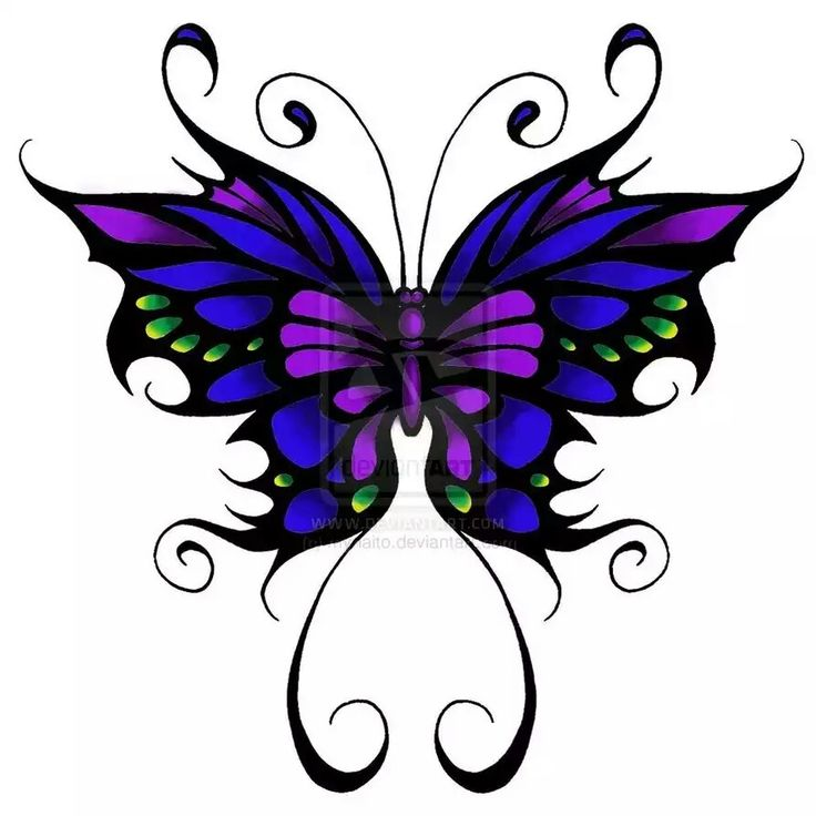 Butterfly for my coloring book sleeve