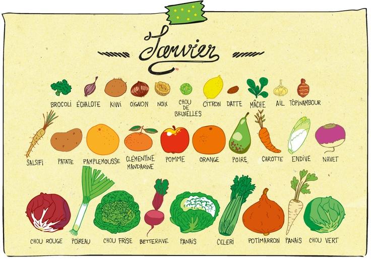 Janvier fruits et l gumes se mettre au vert pinterest fruit - Legumes de saison decembre ...