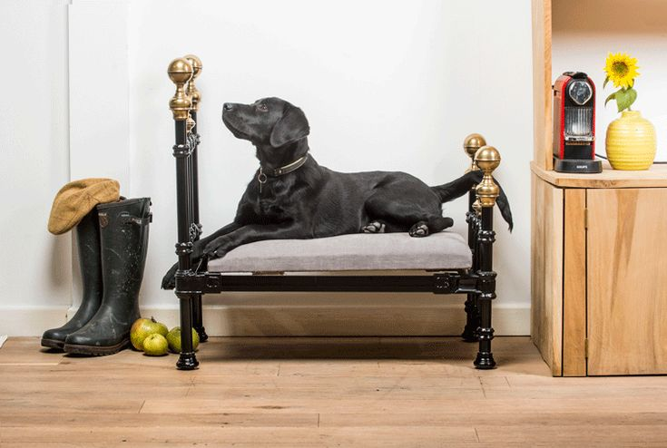 This Christmas the Cornish Bed Company have created the ultimate must-have item for dog owners, a bespokeVictorian dog bed. Crafted from a