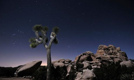 Top 10 national parks in California / The Joshua Tree national park was named after the otherworldly trees that dot the landscape – actually an unusually tall species of yucca – but the real stars here are the rock formations: jumbled piles of outsize boulders that glitter with crystals in the southern Californian sun. Photograph: Alamy