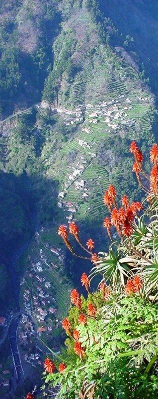 Curral das Freiras,  Madeira Island - PORTUGAL