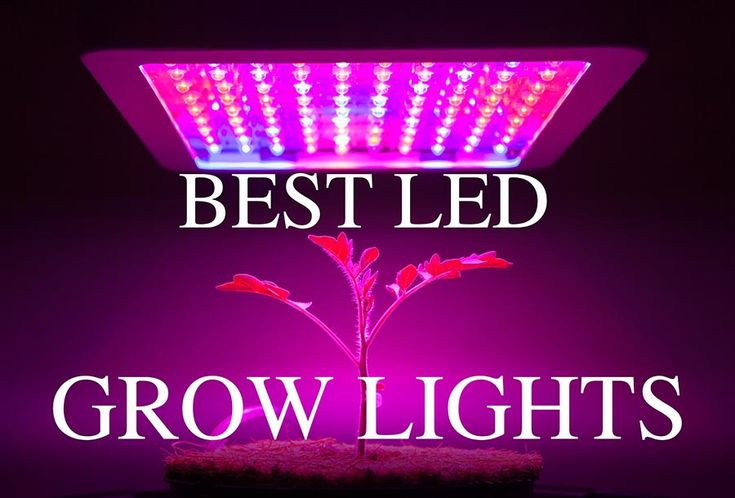 Best LED Grow Lights      In this article we'll discuss what LED Grow Lights are, what are the benefits, and how to choose the best LED grow lights for you.  Scroll down for our top grow light reviews.  LED Grow Light Overview  For decades, indoor growers have relied on artificial light sources such as HID, High Pressure