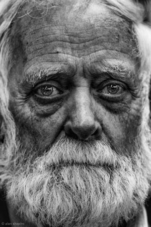 His eyes tell all, he has gone through a hard life! Looks like a wise man!