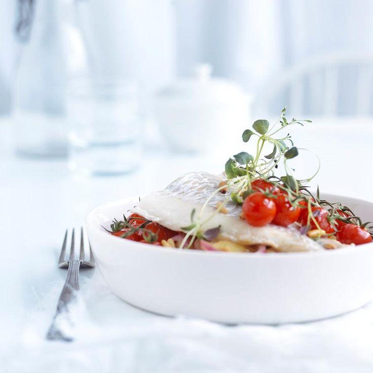 Torsk er en fantastisk, norsk råvare. Her får du vite alt du trenger om næringsinnhold, sesong, bruksområder og gode oppskrifter på torsk.