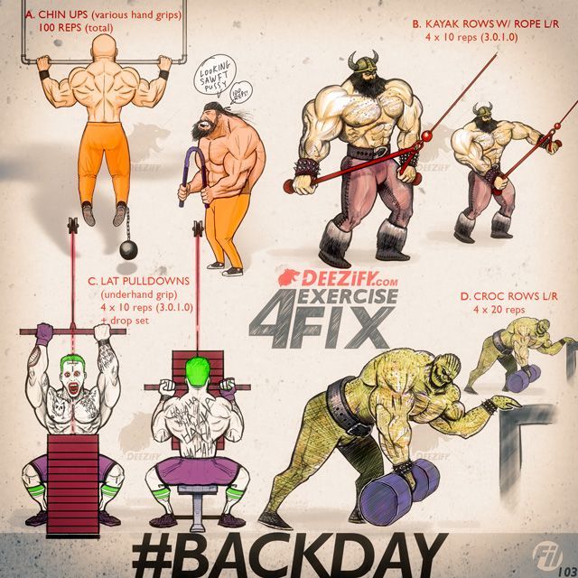 back workouts, chin ups, pulldowns, rows, kayak rows