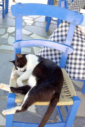 Enjoying a siesta in Ierapetra, Crete