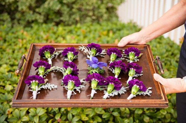 boutonnières of purple carnations and dusty miller for the groomsmen, and a purple anemone for the groom.