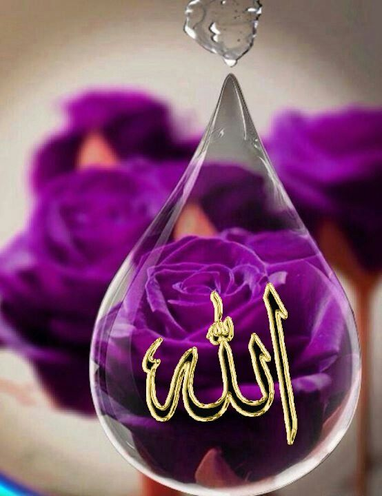 картинки с названием аллах переплетения имеет особое