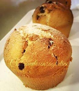 Muffin senza glutine al cocco e cioccolato – Cucinandosenzaglutine