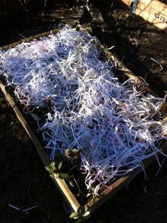 Ressource commune à chacun d'entre nouspouvant servir au mulch : papier et autres courier reçus en continus dans nos boîtes aux lettres ou sortie de nos imprimantes. Investissement minime dans un broyeur à papier de bureau et le tour est joué.