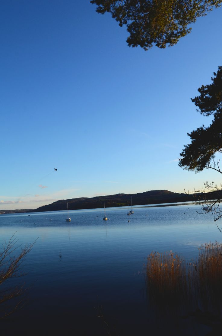 Aeroplane coming down the lake